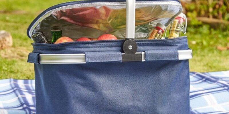 7 luchshih sumok holodilnikov termoizolyaczionnaya proslojka kakuyu kupit plyusy i minusy 601c4625c8efe 800x400 - 7 лучших сумок-холодильников: термоизоляционная прослойка, какую купить, плюсы и минусы