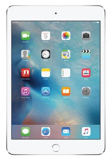 Apple E1553572490686