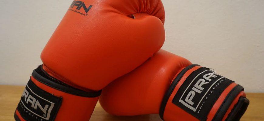 box gloves fight martial arts 870x400 - Качественные боксерские перчатки на 2021 год