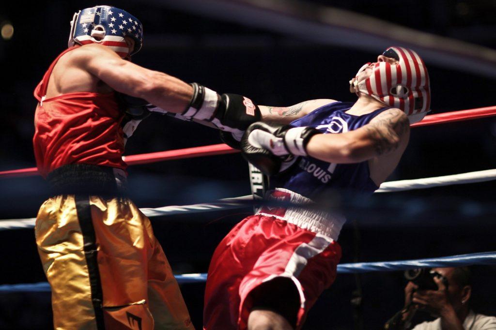 Boxers 919232 1920 1024x682