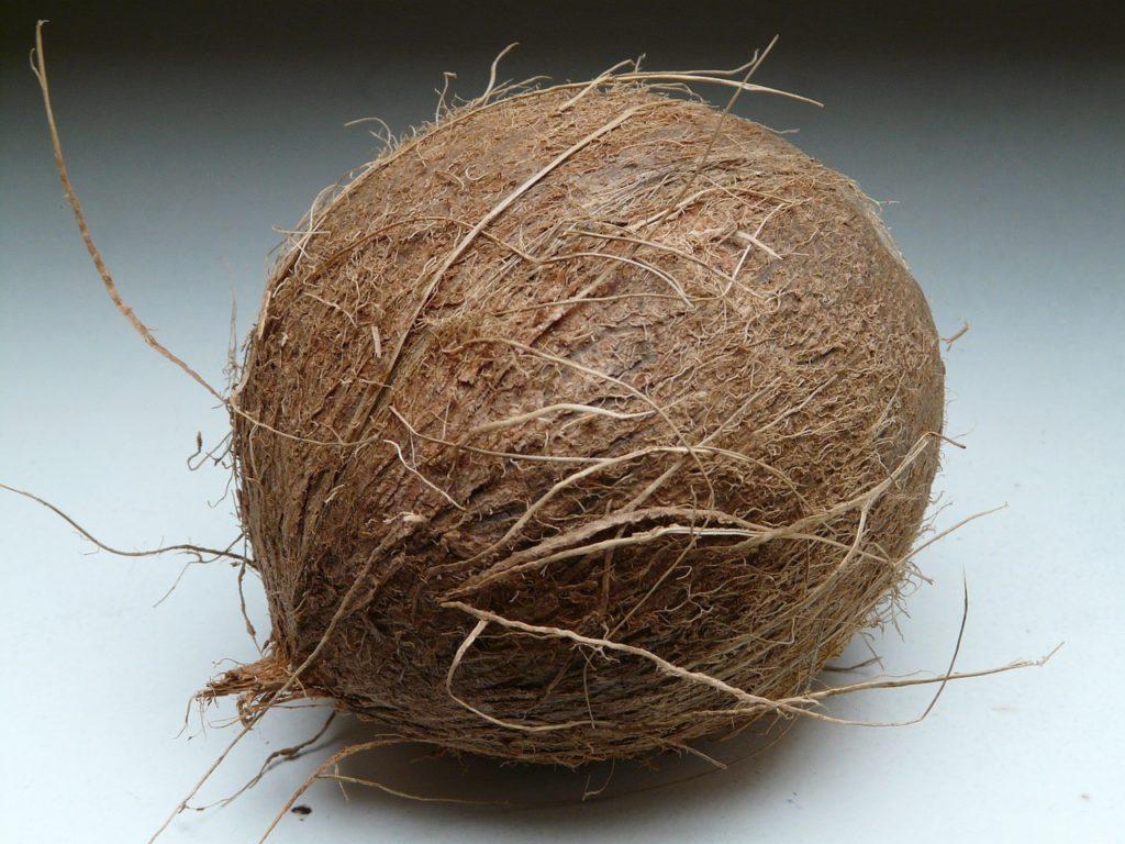 Coconut 60391 1280 1024x768