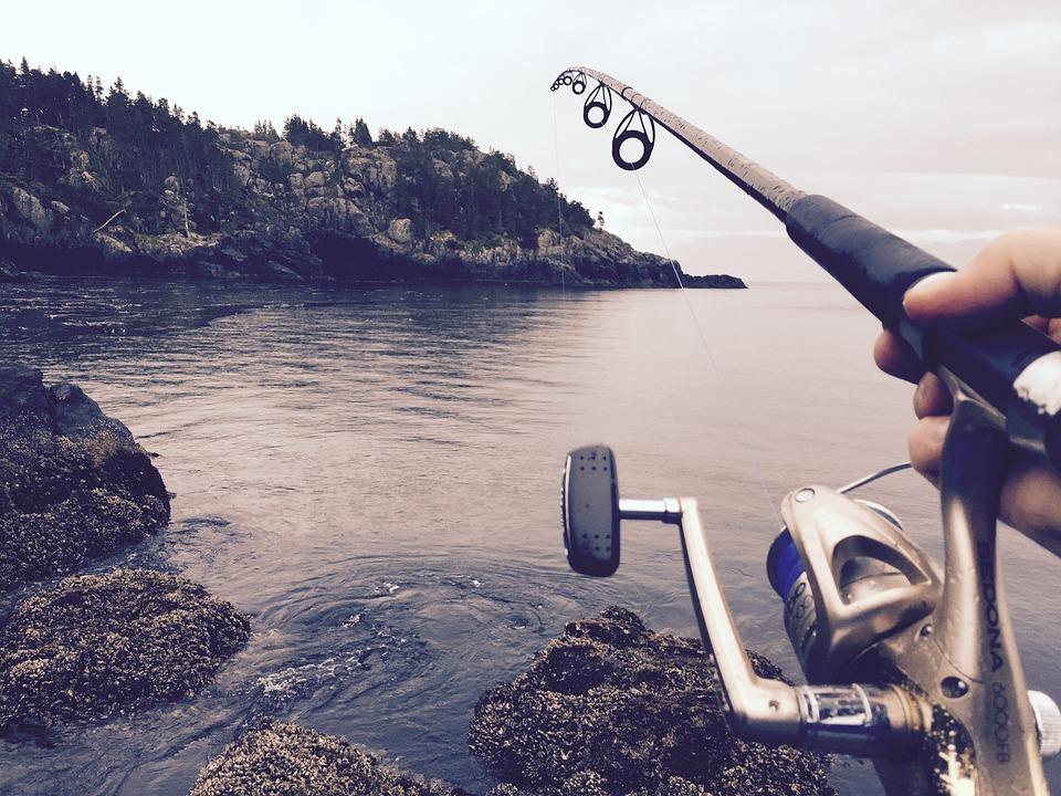 Fishing 1081734 960 720