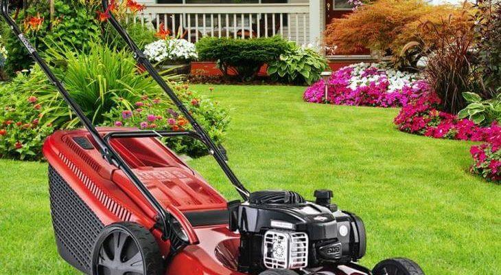 gp2ty 730x400 - Рейтинг-топ лучших газонокосилок по цене/качеству и какую выбрать для неровного участка