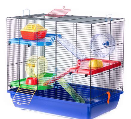 interzoo teddy gigant g089 439x400 - Рейтинг 6 лучших клеток для крыс: рейтинг, характеристики, особенности выбора