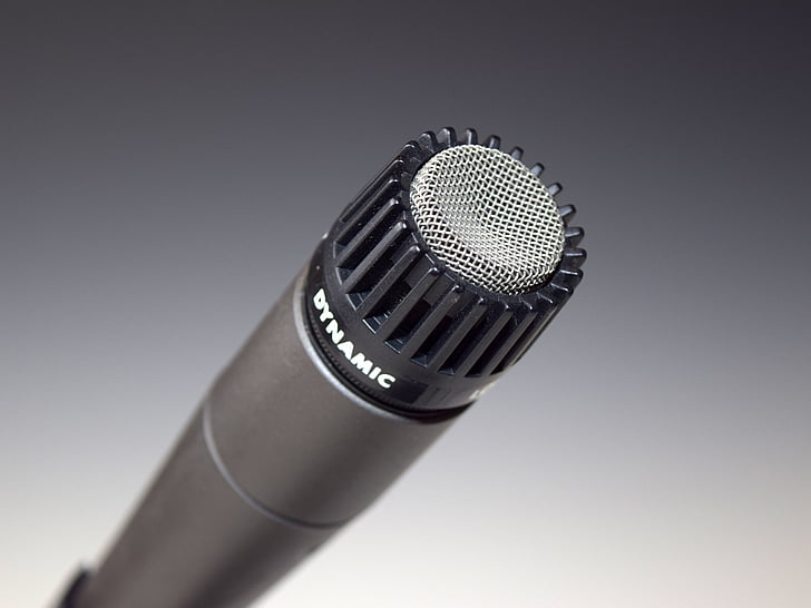 Microphone Mic Dynamic Audio Recording Preview