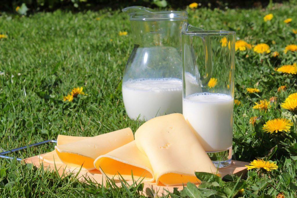 Milk 1385548 1920 1024x683