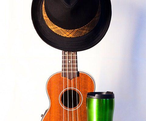 music 2306131 960 720 480x400 - Топ лучших укулеле для новичка и профессионала на 2021 год