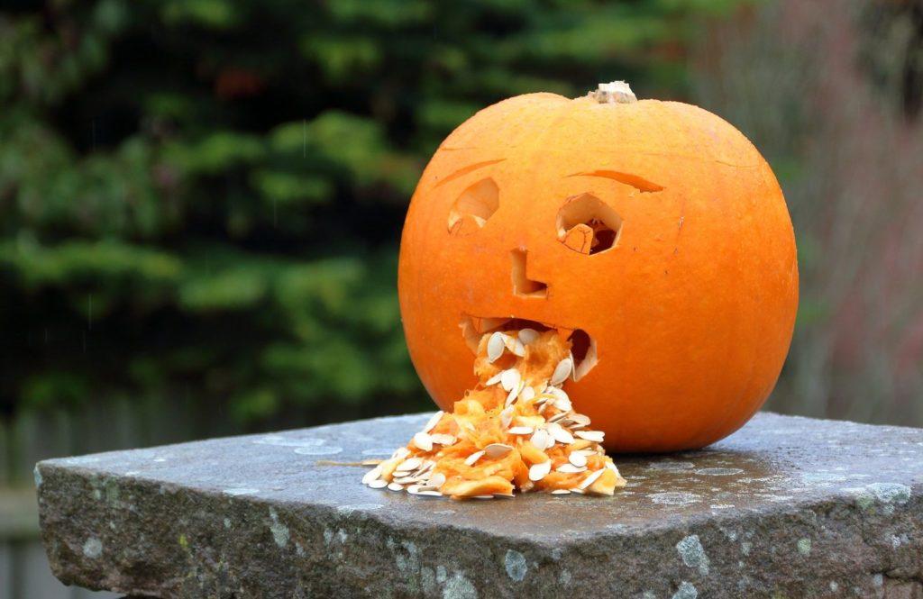 Pumpkin 3630614 1920 1024x665