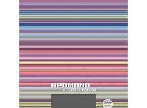redmond rs 736 300x220 - 10 лучших кухонных весов