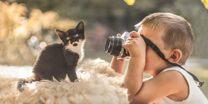 rejting detskih fotoapparatov top 6 modelej 601fa55651f7b 800x400 - Рейтинг детских фотоаппаратов: топ 6 моделей