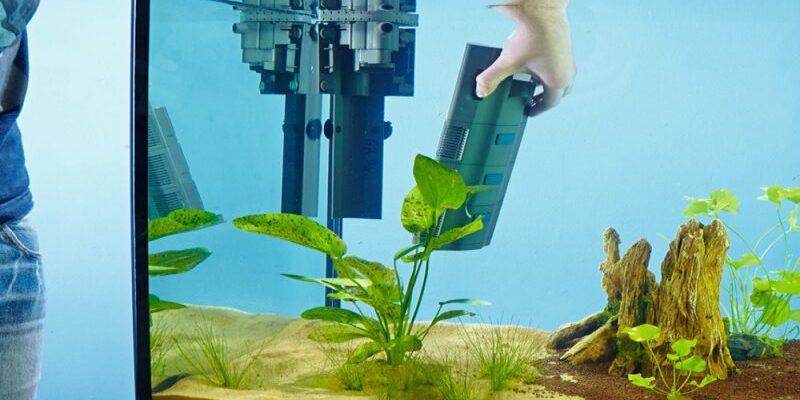 rejting top 10 luchshih filtrov dlya akvariuma tip ochistki kakoj kupit plyusy i minusy 601c28dbbf593 800x400 - Рейтинг ТОП 10 лучших фильтров для аквариума: тип очистки, какой купить, плюсы и минусы