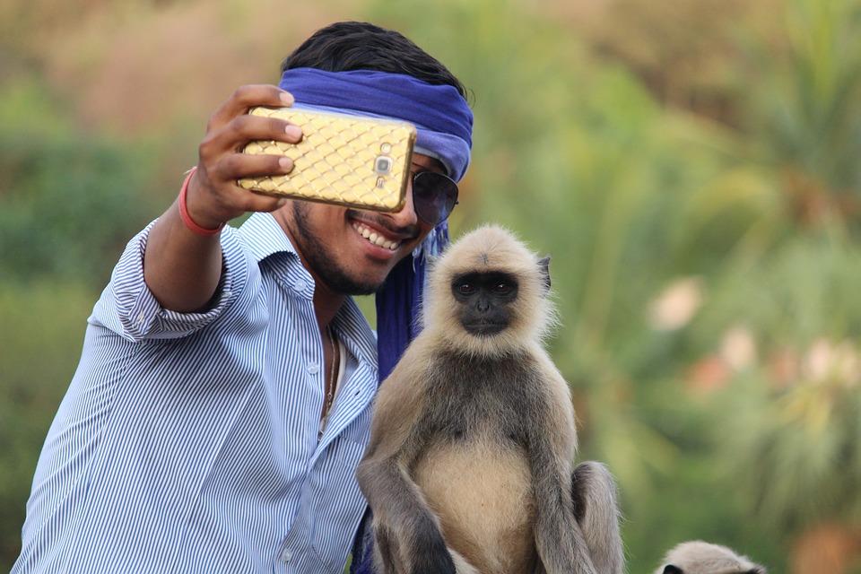 Selfie With Monkey 3446978 960 720