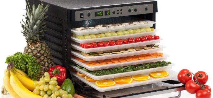 sushilka dlya ovoshhej i fruktov 870x400 - Выбираем ТОП-лучших сушилок для овощей и фруктов