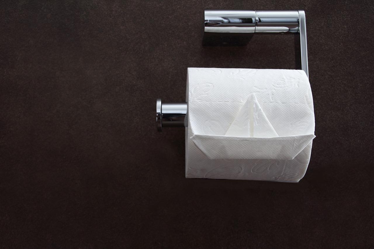 Toilet Tissue 4957823 1280